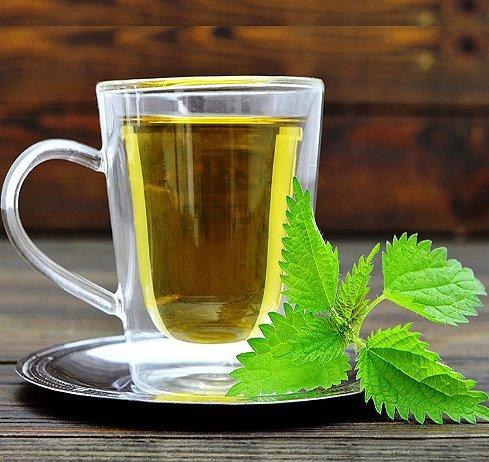крапивный чай
